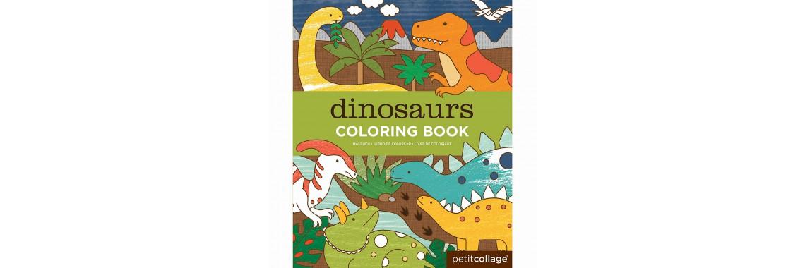 livre coloriage dinosaure